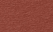 rustic-red siding